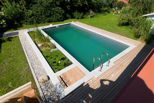 Natural Swimming Pool Design natural swimming pool design ideas Pool Type 2 Pool Type 1 Pool Type 3